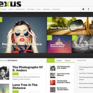 Nexus - ElegantThemes