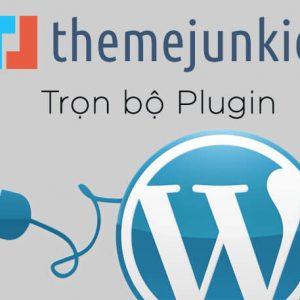 trọn bộ plugin của ThemeJunkie