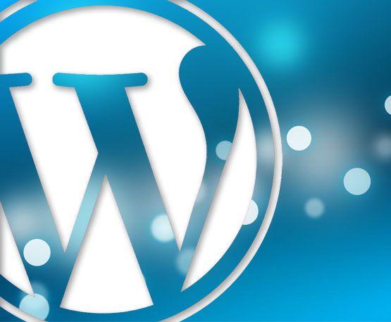 Thiết kế website và cài đặt theme, plugin WordPress bản quyền 1