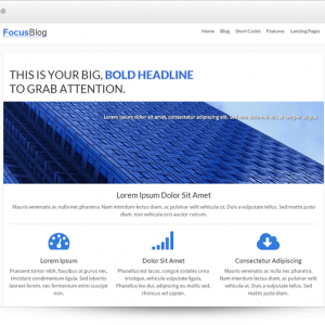 focusblog - ThriveThemes