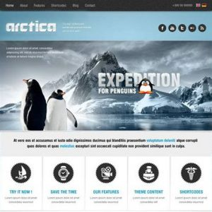 Arctica - aitthemes