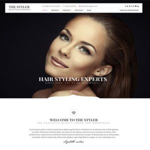 The Styler - cssigniter