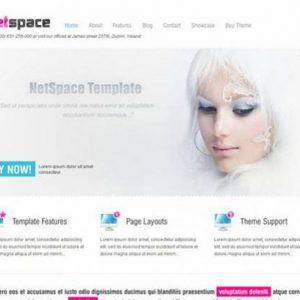 netspace - aitthemes