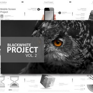 Black White Project Vol. 2 Powerpoint