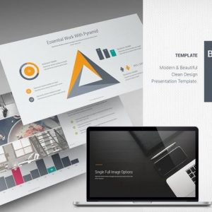 Bridge Business Template