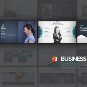 Business Mix Powerpoint Presentation