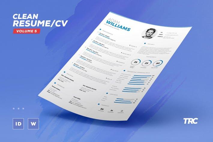 Clean Resume/Cv Volume 5