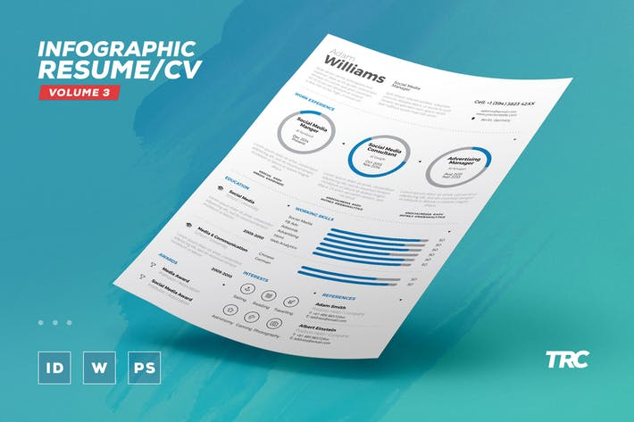 Infographic Resume/Cv Volume 3