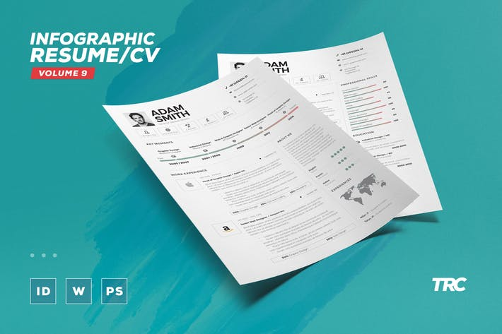Infographic Resume/Cv Volume 9