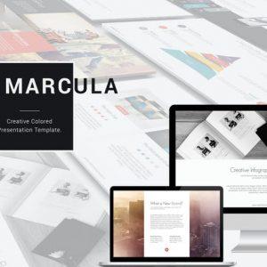 Marcula Presentation Template