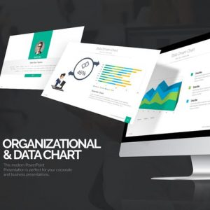 Organizational & Data Chart Presentation