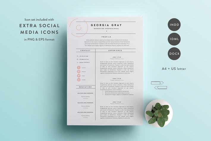 Resume Template 3 Page   CV Template   INDD + DOCX