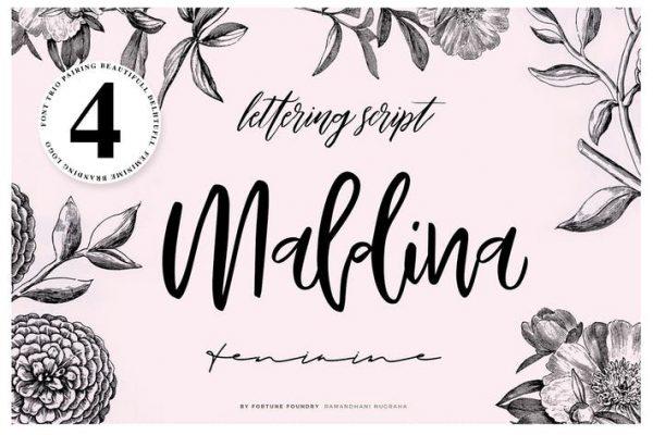 Maldina 4 fonts 1