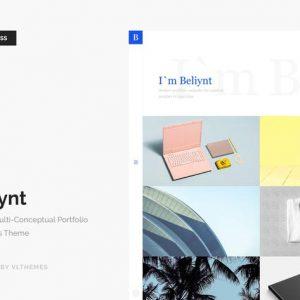 Beliynt - Modern Multi-Conceptual Portfolio