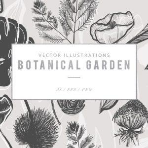 Botanical Garden Illustrated Graphics