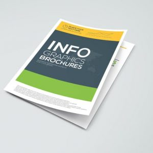 Business infographics elements for Brochures
