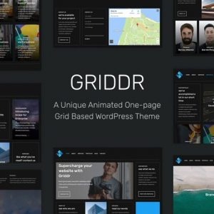 griddr animated grid creative wordpress theme