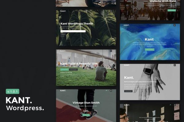 Kant - A Multipurpose WordPress Theme for Startups