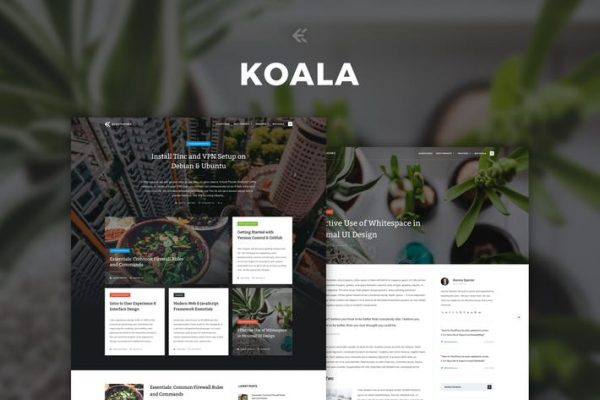 koala responsive wordpress blog theme