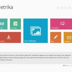 Metrika — Responsive OnePage WordPress Theme