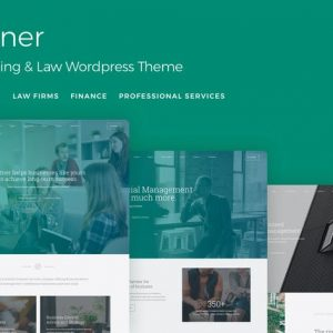 Partner - Accounting and Law WordPress Theme