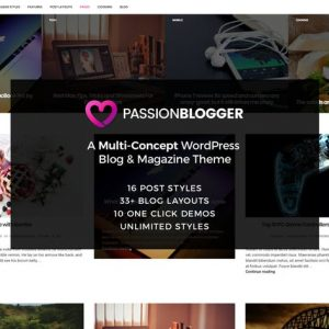 passion blogger a responsive wordpress theme