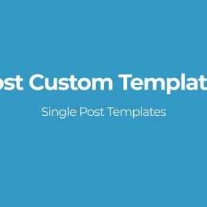Post Custom Templates