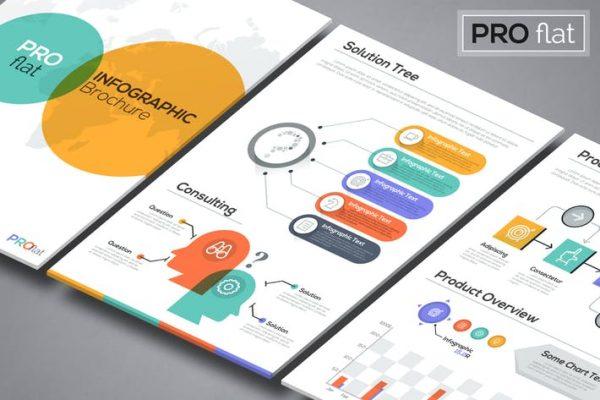 Pro Flat Infographic Brochures