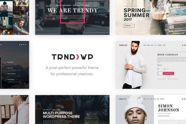 Trendy - Creative Multi-Purpose WordPress Theme
