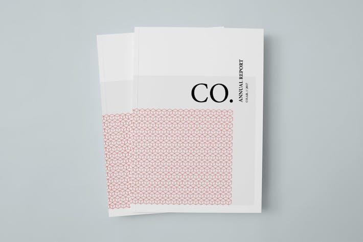CO. Annual Report
