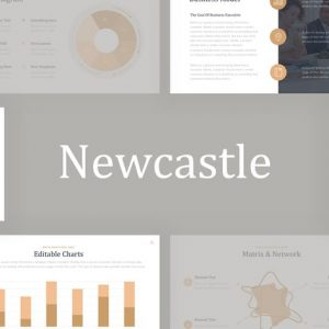 Newcastle Professional Google Slides