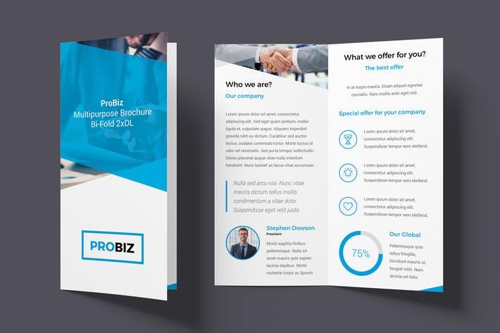 ProBiz – Brochure Bi-Fold DL