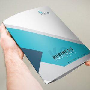 Trifold Brochure A4x3