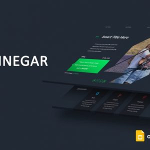 Vinnegar - Google Slides Template