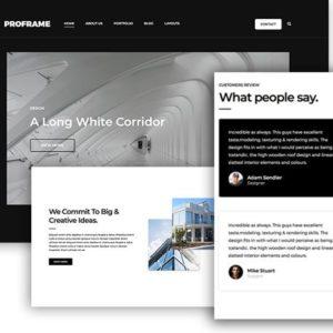 ProFrame – ThemeJunkie