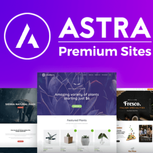 Astra Premium Sites - Có key lifetime