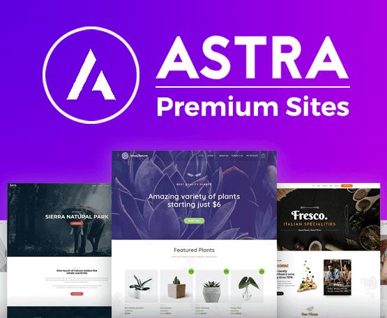 Astra Premium Sites - Có key lifetime