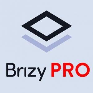 Brizy Pro - Có key autoupdate