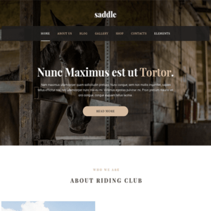 Saddle – MyThemeShop