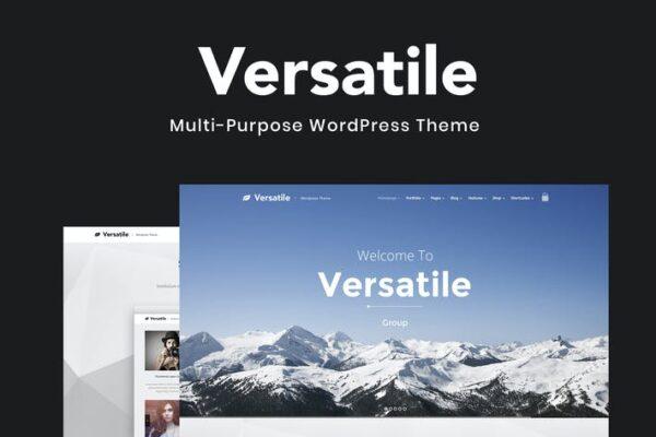 Versatile - Multi-purpose WordPress Theme 1
