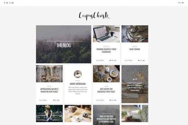 CorpusChristi - Modern Blog WordPress Theme 1