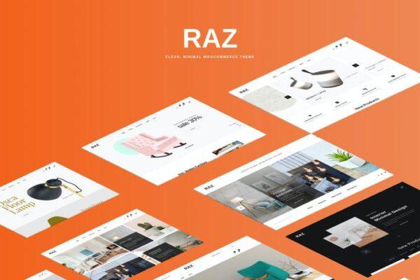 Raz - Clean, Minimal WooCommerce Theme 1