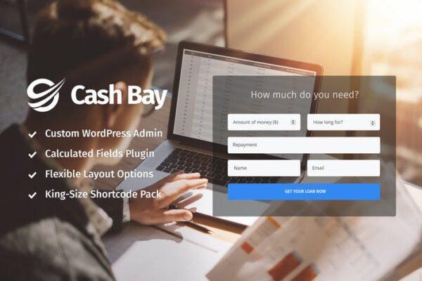 Cash Bay - Loan & Credit Money WP Theme 1