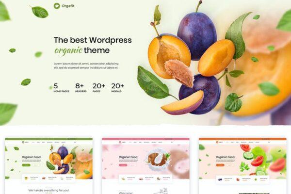 OrgaFit - Organic and Health WordPress Theme 1