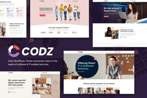 Codz - Software & IT Services Theme 1