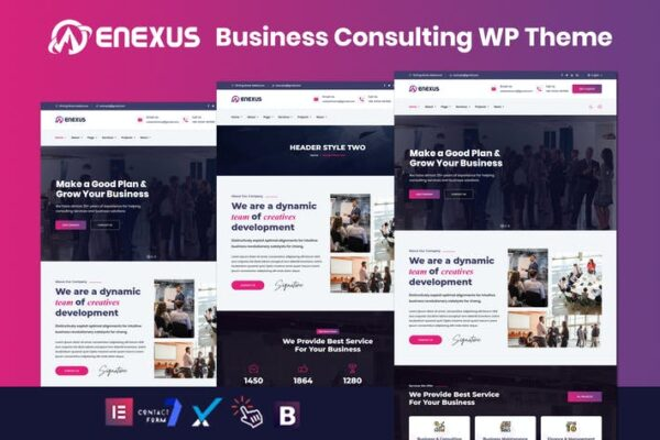 Enexus - Consulting Business Elementor WordPress 1