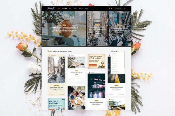 Tumli - Personal Masonry WordPress Theme 1
