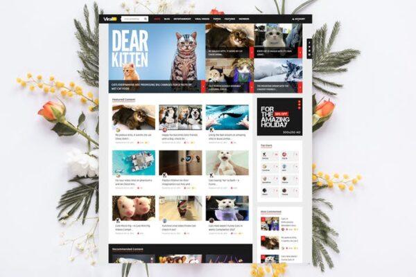 ViralVideo - User Membership News / Magazine Theme 1