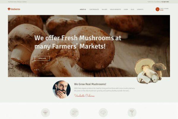 Umberto - Mushroom Farm & Organic Products Store 1