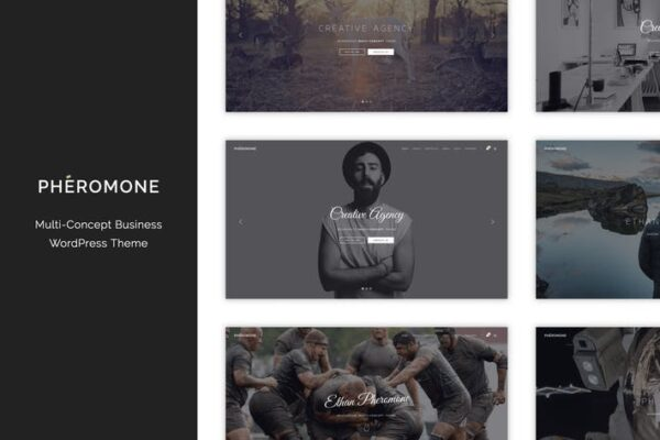 Pheromone - Creative Multi-Concept WordPress Theme 1